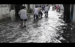 Mưa lớn kết hợp triều cường, đường phố Sài Gòn lại thành sông