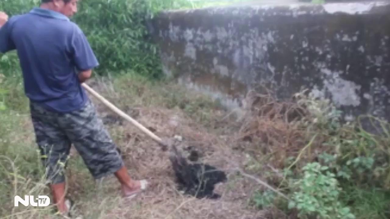 Ghi nhanh: 100 tấn chất thải của Formosa chôn lấp vi phạm pháp luật về môi trường