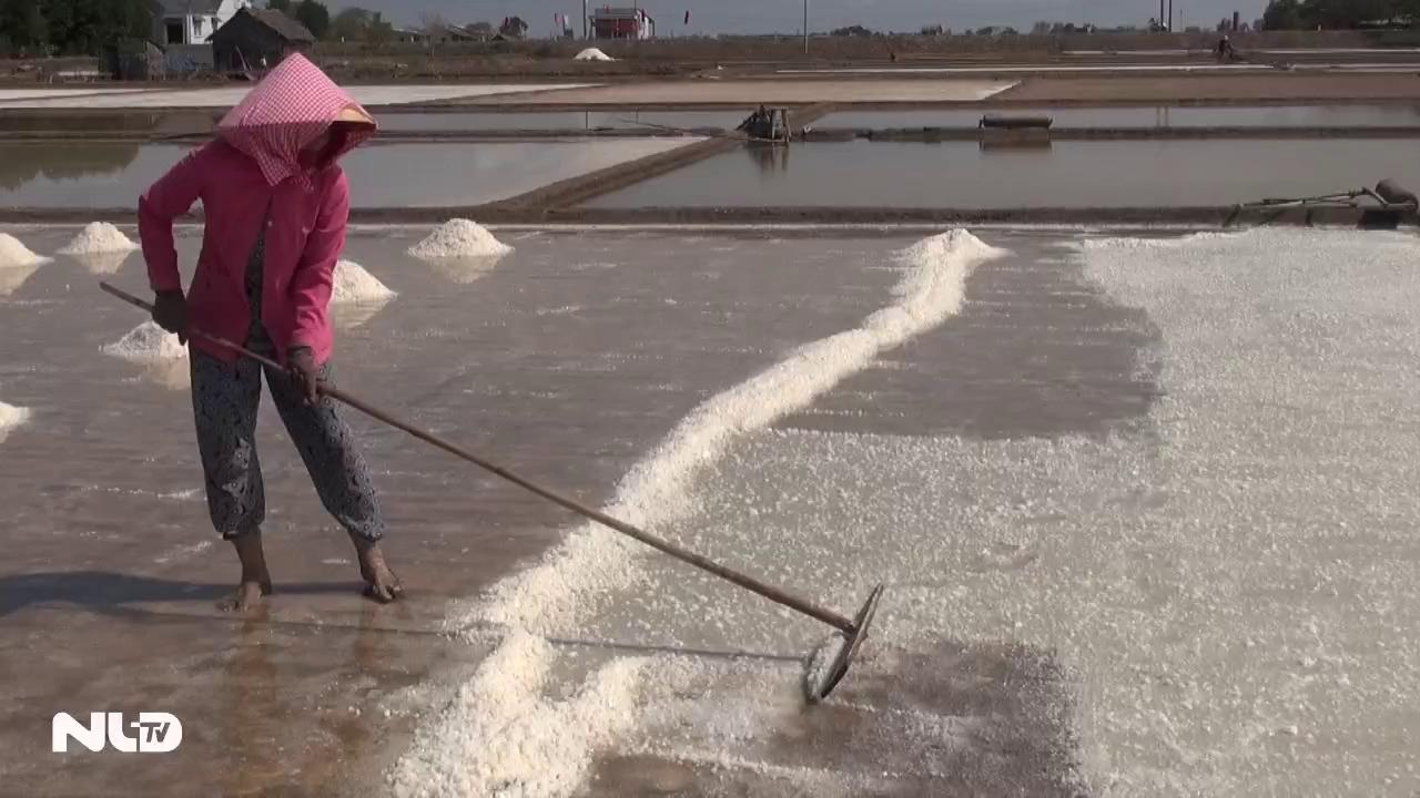 Phóng sự: 40.000 đồng… mua được 100 kg muối!