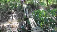 Người dân ấp An Trại phải qua cây cầu xuống cấp rất nguy hiểm