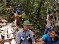Ông Lê Trí Thanh – Phó Chủ tịch tỉnh Quảng Nam - trao đổi với báo chí tại hiện trường vụ chặt hạ rừng pơmu.