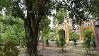 Chùa Vạn Phước ở đình gò Dương Xuân nhìn ra Cồn Bông Sứ và suối Tiên ở trước chùa