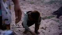 Đầu bếp lừng danh Gordon Ramsay thử món nhện chiên giòn ở Campuchia