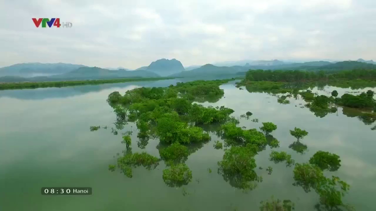 Vietnam Discovery: Wild and charming beauty of Hoanh Bo