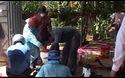 Quảng Trị: Hơn 400 trường hợp mắc bệnh sốt xuất huyết