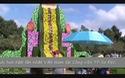 Thác hoa lớn nhất  Việt Nam đặt tại Công viên TP Sa Đéc, tỉnh Đồng Tháp