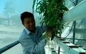 Bình Định: Trồng rau sạch không cần đất, không tốn công chăm bón