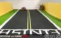 Cuộc chạy đua giữa rùa và thỏ