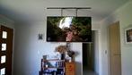 Giấu TV lên trần nhà chỉ trong nháy mắt