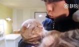 Cưỡng hôn mèo là không nên đâu