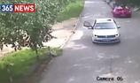 Hổ vồ du khách chết tại công viên Trung Quốc