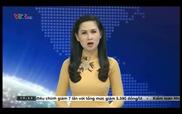 Thời sự VTV: Tổng cục môi trường làm việc về xử lý rác thải tại Lý Sơn