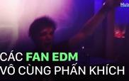 """Cư dân mạng """"sốt xình xịch"""" trước tin đồn DJ số 3 thế giới Martin Garrix tới Việt Nam"""