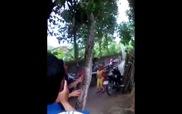 Con trăn 37 kg bị người dân treo lên cây ở Nghệ An