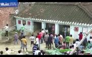 Báo hoang tấn công ngôi làng ở Ấn Độ, bé 3 tuổi và 9 người khác bị thương