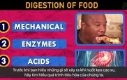Liệu chúng ta có bị dính ruột không khi lỡ nuốt kẹo cao su vào bung?