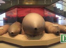 Những loại bom quái đản quân đội Mỹ từng sử dụng ở Việt Nam