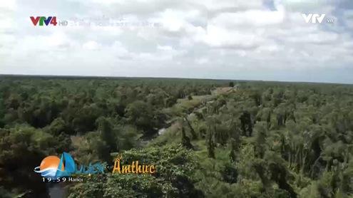 Du lịch và Ẩm thực: Cà Mau - hoang sơ vùng đất mũi