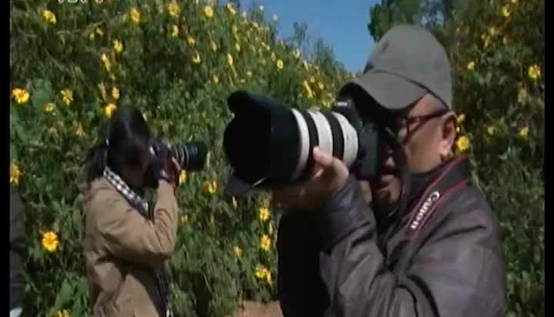 Tạp chí du lịch: Lên non tìm động hoa vàng