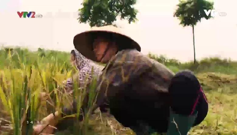 Thay đổi cuộc sống: Nhân vật Thu Trang