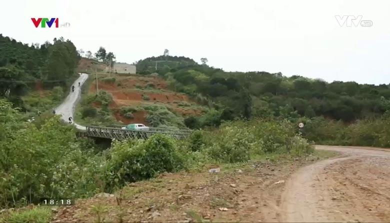 Nông nghiệp sạch: Dưa leo baby sản phẩm nông nghiệp tỉnh Lâm Đồng