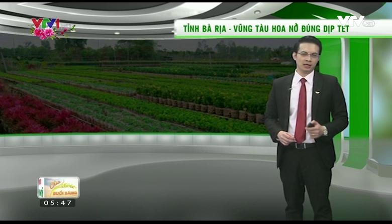 Bản tin thời tiết nông vụ - 24/01/2017