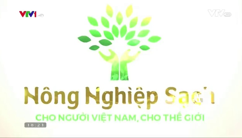 Nông nghiệp sạch: Xoài Cát Chu sản phẩm nông nghiệp tỉnh Đồng Tháp