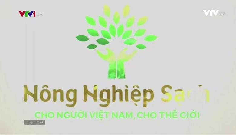 Nông nghiệp sạch: Chè làng Bát sản phẩm nông nghiệp tỉnh Tuyên Quang