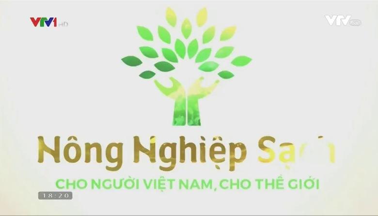 Nông nghiệp sạch: Hoa lily sản phẩm nông nghiệp tỉnh Lâm Đồng
