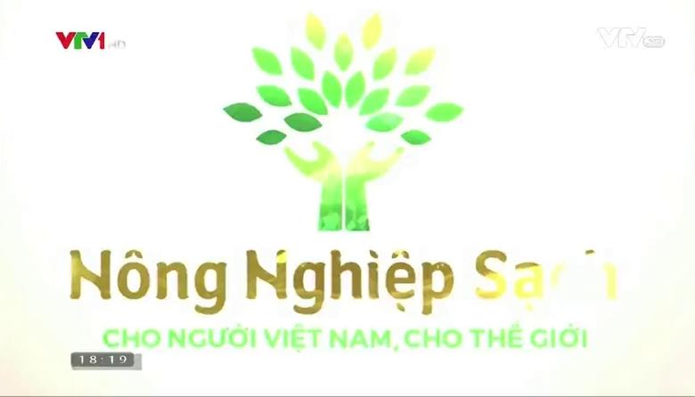 Nông nghiệp sạch: hàu sữa Thái bình Dương sản phẩm nông nghiệp tỉnh Quảng Ninh