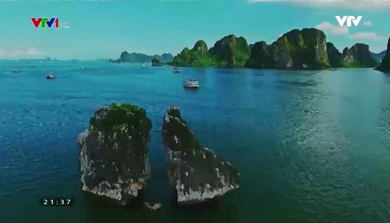VTVTrip - Du lịch cùng VTV: Thành phố Đà Lạt: Ngàn hoa đón năm mới
