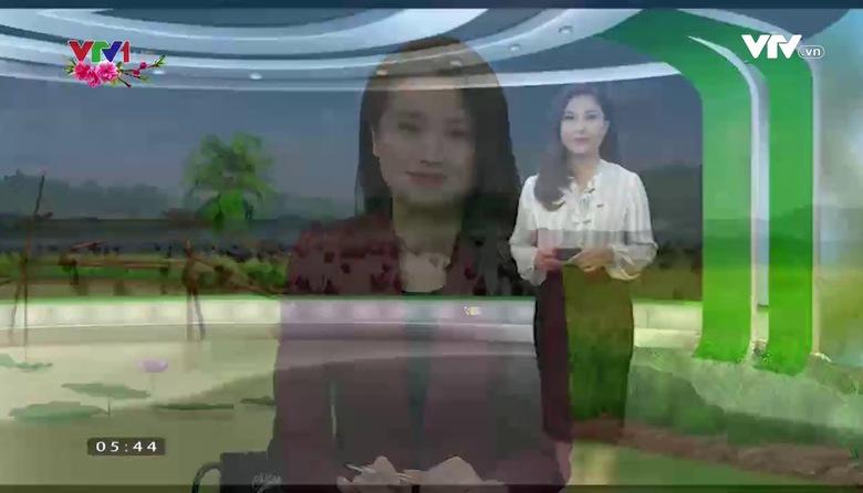 Bản tin thời tiết nông vụ - 25/01/2017