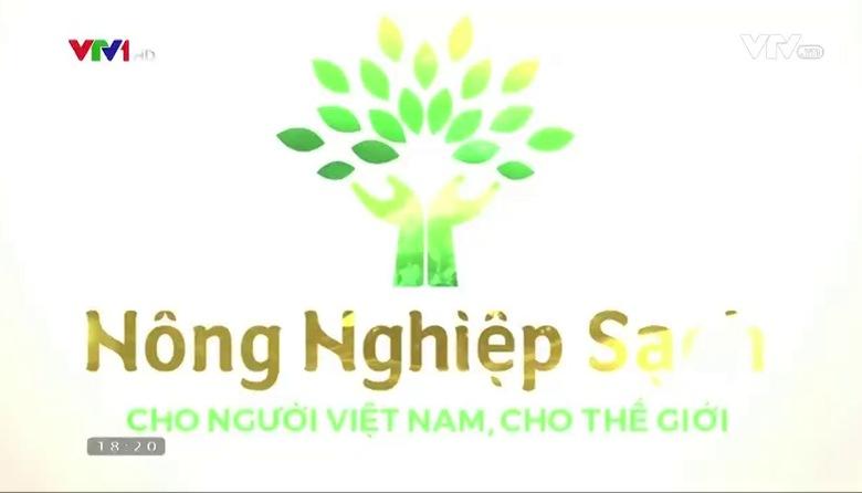 Nông nghiệp sạch: Cá Xuân Nẻo sản phẩm nông nghiệp tỉnh Hải Dương