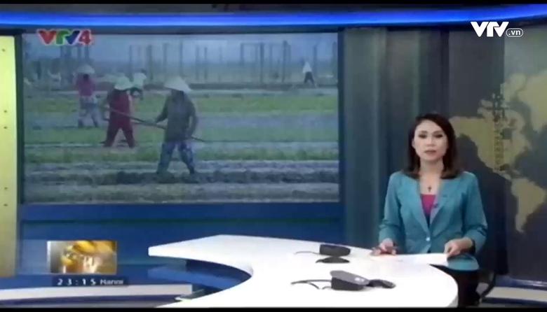 Bản tin tiếng Nga - 06/01/2017