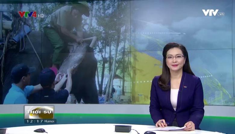 Bản tin tiếng Việt 12h - 15/01/2017