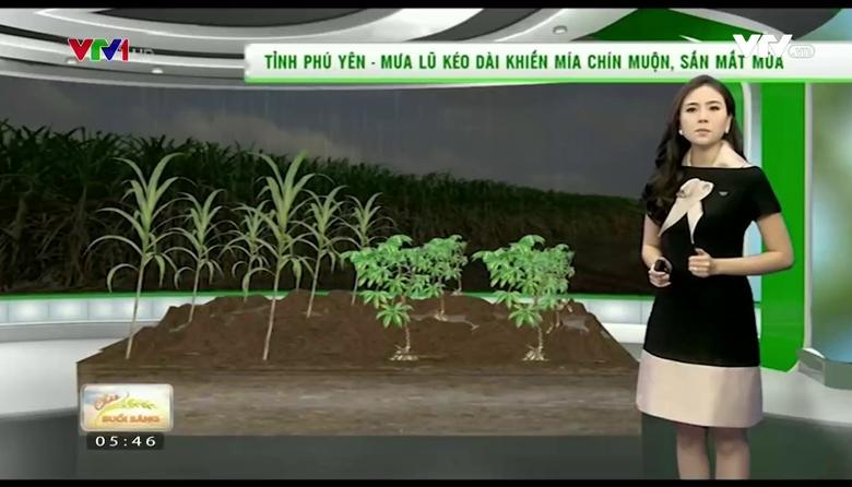 Bản tin thời tiết nông vụ - 18/01/2017